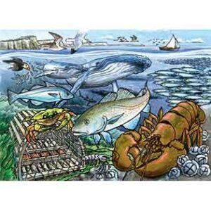 Life in the Atlantic Ocean-35 piece Tray Puzzle
