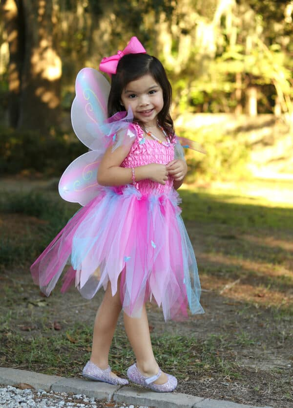 Butterfly Dress & Wings With Wand, Pink/Multi, Size 5-6