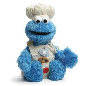 Teach me Cookie Monster 17″